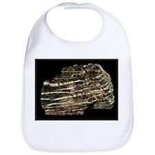Serpentinite metamorphic rock - Bib