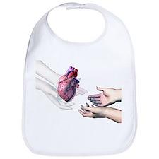Organ donation - Bib