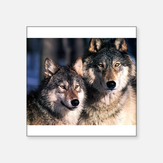 "two wolf Square Sticker 3"" x 3"""