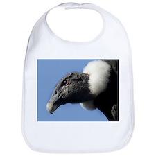 Andean condor - Bib