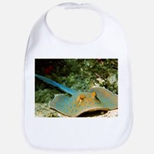 Blue-spotted fantail ray - Bib