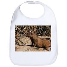 Banded mongoose - Bib