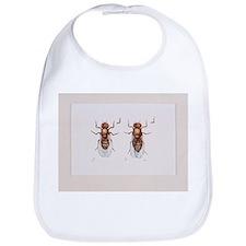 Fruit flies - Bib