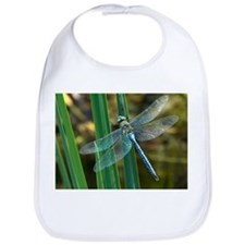 Male emperor dragonfly - Bib