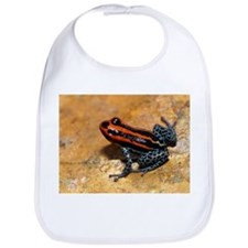 Poison arrow frog - Bib