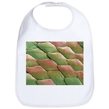 Python skin, SEM - Bib