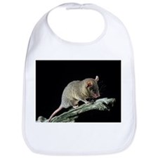 Short-tailed opossum - Bib