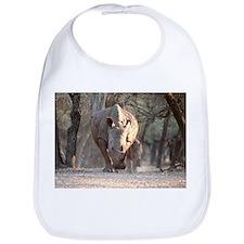 White rhinoceros mother and calf - Bib
