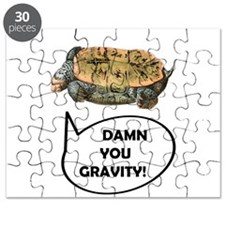 Damn you gravity Turtle Puzzle