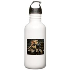 Famous Paintings: Stag at Sharkys Sports Water Bottle
