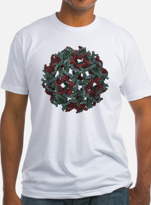 Immature West Nile virus, molecular model - Shirt