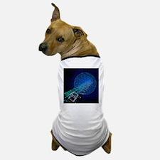 Electron and proton beams, computer model - Dog T-