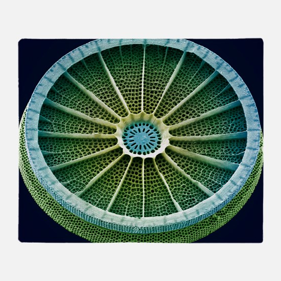 Diatom, SEM - Throw Blanket
