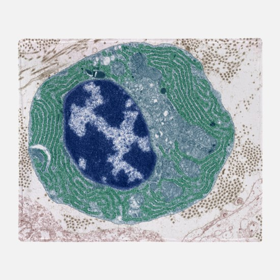 Plasma cell, TEM - Throw Blanket