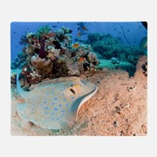 Blue-spotted stingray - Throw Blanket