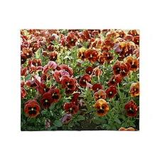 Pansies (Viola sp,) - Throw Blanket