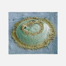 Trichodina parasite, SEM - Throw Blanket
