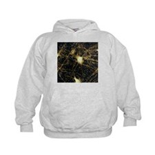 Motor neurons, light micrograph - Hoodie