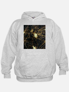 Motor neurons, light micrograph - Hoodie