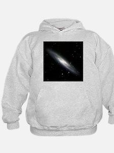 Spiral galaxy NGC 253 - Hoodie