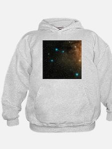 Sagittarius stars - Hoodie