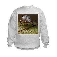 Black vine weevil, SEM - Sweatshirt