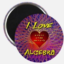I Love Algebra Magnet