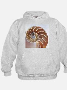 Nautilus shell - Hoodie