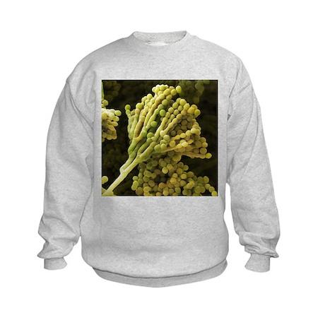Mould fungus, SEM - Kids Sweatshirt