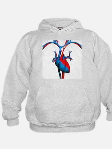 Heart and blood vessels, artwork - Hoodie