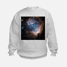 Starbirth region NGC 602 - Sweatshirt