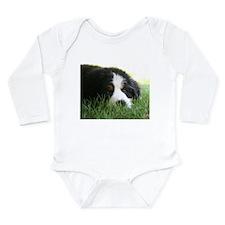 Bernese Puppy Body Suit