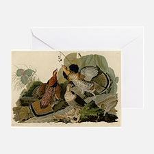 Ruffled Grouse Greeting Card