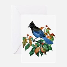 A Blue Stellers Jay in Dogwood Tree Greeting Card
