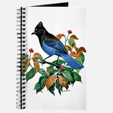 A Blue Stellers Jay in Dogwood Tree Journal
