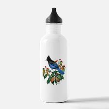A Blue Stellers Jay in Dogwood Tree Water Bottle