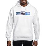 3 Pictures (2) Hooded Sweatshirt