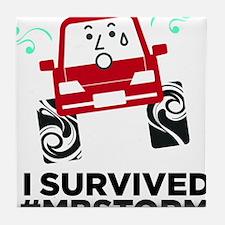 I survived #mbstorm Tile Coaster
