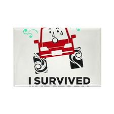 I survived #mbstorm Rectangle Magnet