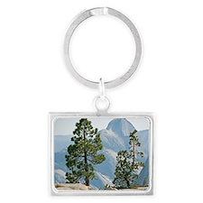 Jeffrey pine and whitebark pine trees - Landscape