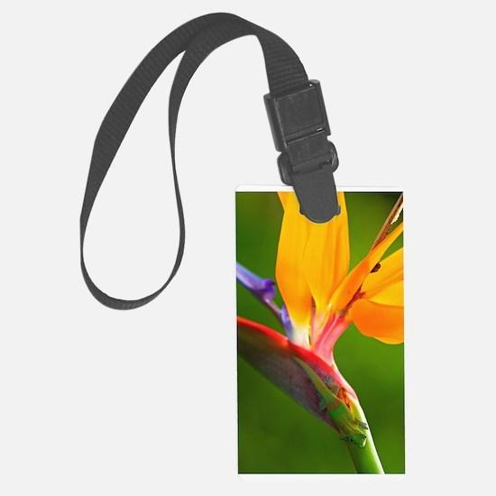 Bird of Paradise Flower Large Luggage Tag