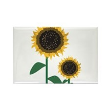 Sunflowers Rectangle Magnet