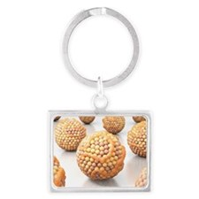 High cholesterol levels - Landscape Keychain