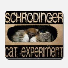 schrodinger cat Mousepad