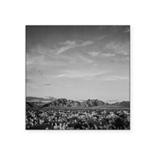 Ansel Adams Distant View of Mountains Square Stick
