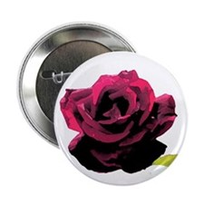 """Painted Rose 2.25"""" Button"""