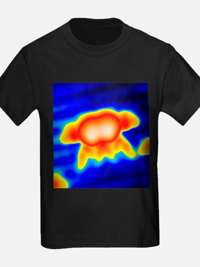 Spintronics research, STM - Kid's Dark T-Shirt