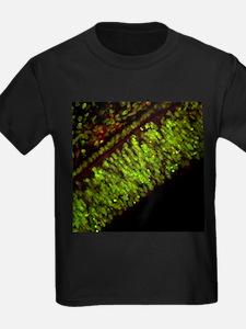 Cell death - Kid's Dark T-Shirt