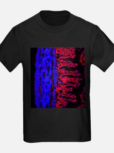 Colon lining - Kid's Dark T-Shirt