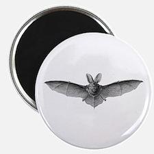 Vintage Bat Non-Candy Treats - 10 magnet pack